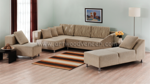 Modern Styles of Sofa's